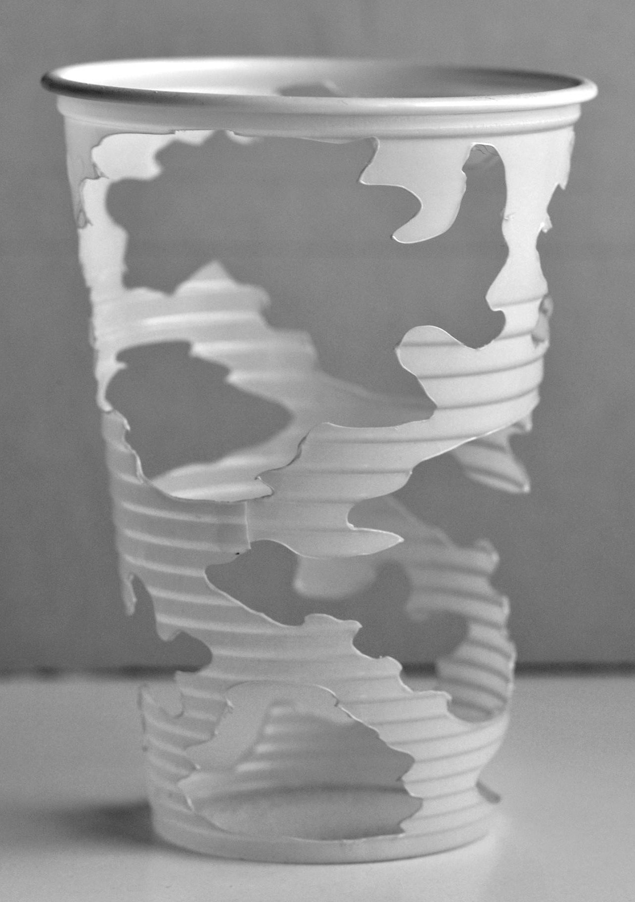 Camouflage Cup